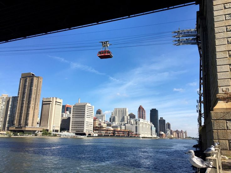 Looking for ideas to entertain the kids this weekend? Take a ride on the Roosevelt Island tram 🚋
