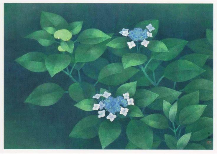 Shoko Uemura 八仙花