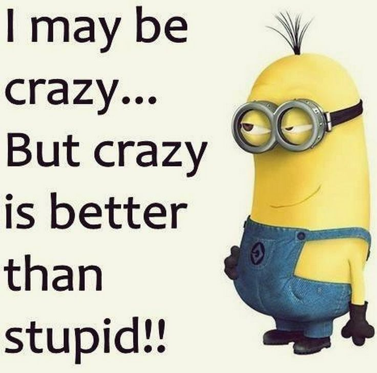 Stupid Minion Quotes: Best 25+ Funny Sister Quotes Ideas On Pinterest