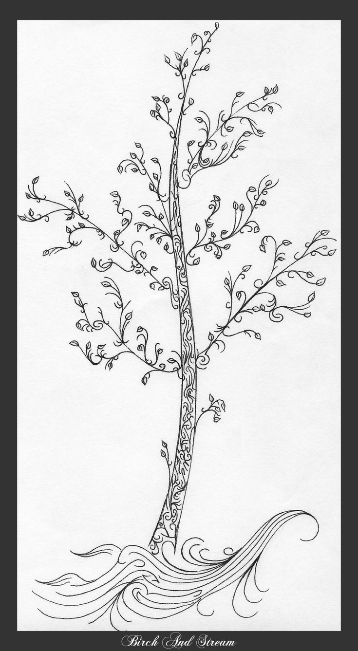 1877 best images about rbores on pinterest trees tree for Birch tree tattoo meaning