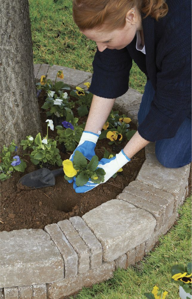 Best 25 Garden Pavers Ideas On Pinterest Paving Diy