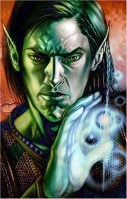 Neverwinter High Elf Wizard
