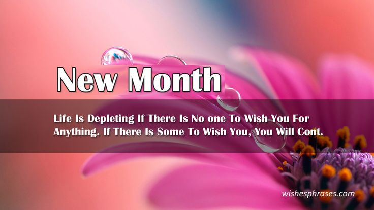 Its a New Month and you want to greet someone start with our Welcome New Month Quotes collection the some out class word quotes