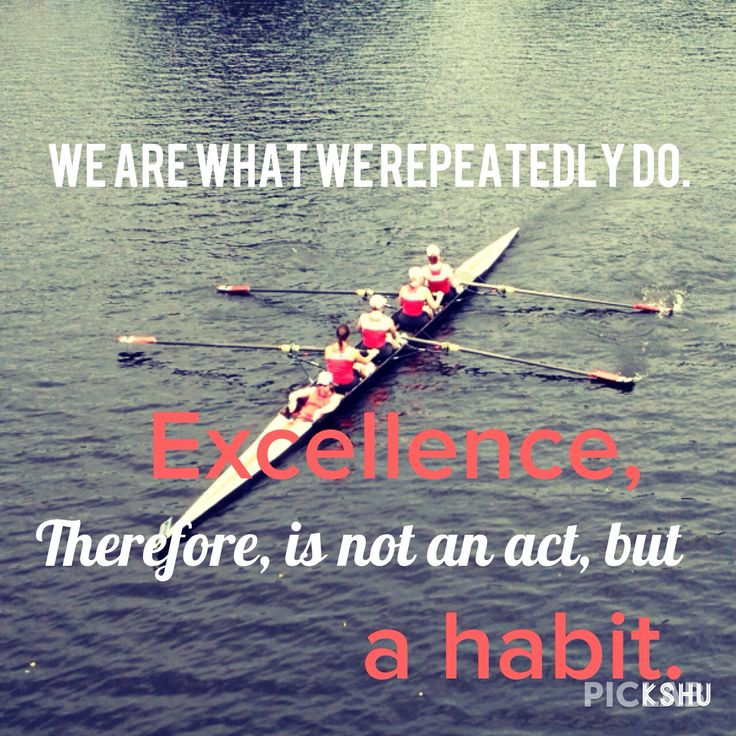 We are what we repeatedly do. Excellence, then, is not an act, but a habit. ~ Aristotle #achievement #accomplishment