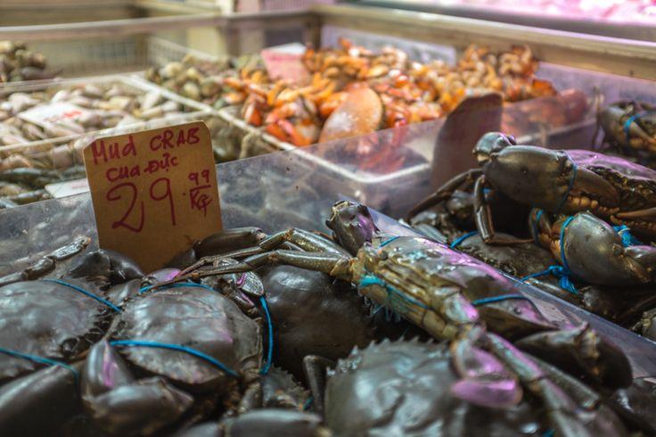 Mud Crabs. Footscray Market, Melbourne.