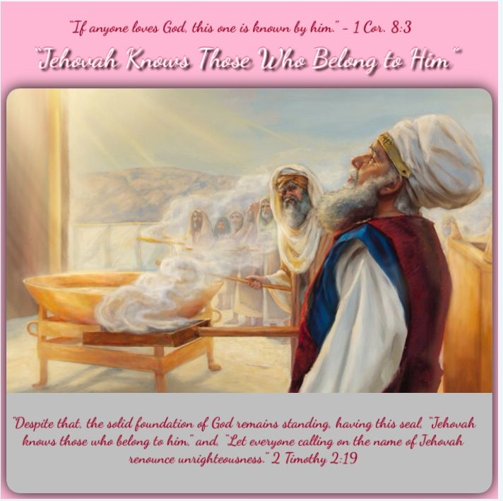 Daily Bible Quotes Text: Best 25+ Jw Org Daily Text Ideas On Pinterest