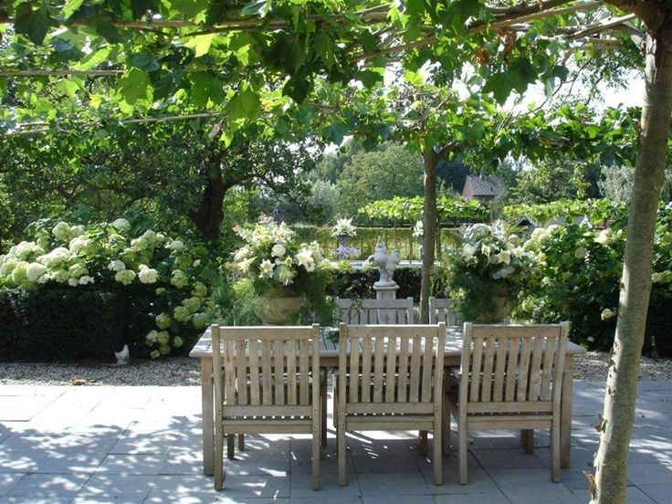 Houten Tafel & Stoelen - Hortensia's - Platanen - Grijze Bestrating