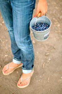 jeans and flip flops. the dynamic duo!: Buckets, Blue Berries, Upick Blueberries, Blue Jeans, Berries Cherries Etc, Blueberries Pickin, Blueberries 3, Country, Old Jeans
