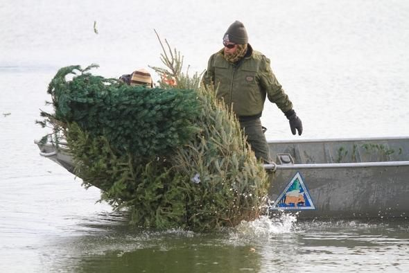 Missouri Department of Conservation Fisheries biologists sink used Christmas trees in the water to provide cover and habitat for fish.