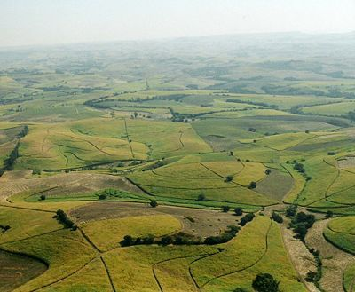 Kwa Zulu is known for it's sugar cane farms. The area is fertile and perfect for growing sugar cane.  We lived in the Bruyns HIll area for a while in an original 200 year-old farm house.