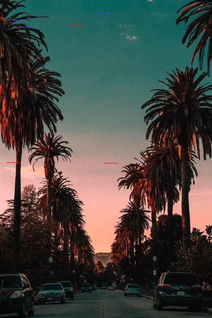 1001 Images De Paysage Urbain Pour Trouver Le Plus Beau Fond D Ecran Paysage Los Angeles Palmes Hautes Au Couche In 2020 Schone Landschaften Bilder Stadtlandschaft