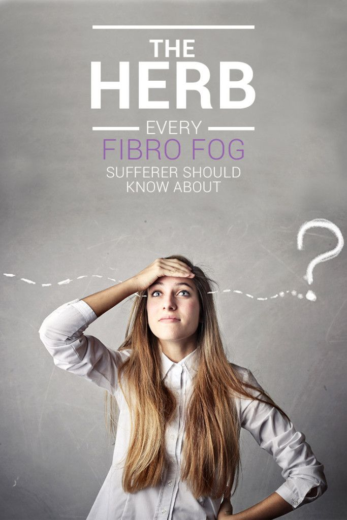 """Are you one of the 80% of Fibromyalgia patients that suffers from cognitive difficulties, otherwise known as """"brain fog"""" or """"fibro fog""""? On paper fibro fog is described as a lack of mental clarity and an inability to focus, pay attention or recall information.  In reality it is that and more. Learn about how the herb Bacopa Monnieri helps improve concentration and memory..."""