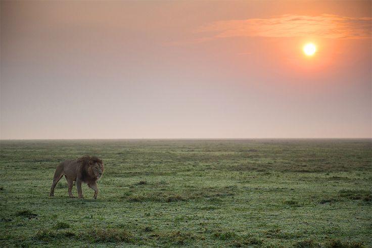 Fotoconsigli: i migliori luoghi selvaggi