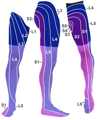 What vertebra causes which leg pains?  Lower Leg Pain.