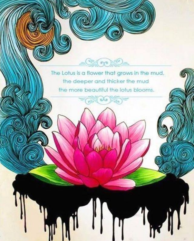 1000+ Ideas About Lotus Flower Quote On Pinterest