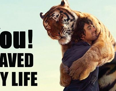 """Check out new work on my @Behance portfolio: """"Big Cat Abuse Billboard"""" http://be.net/gallery/35463609/Big-Cat-Abuse-Billboard"""