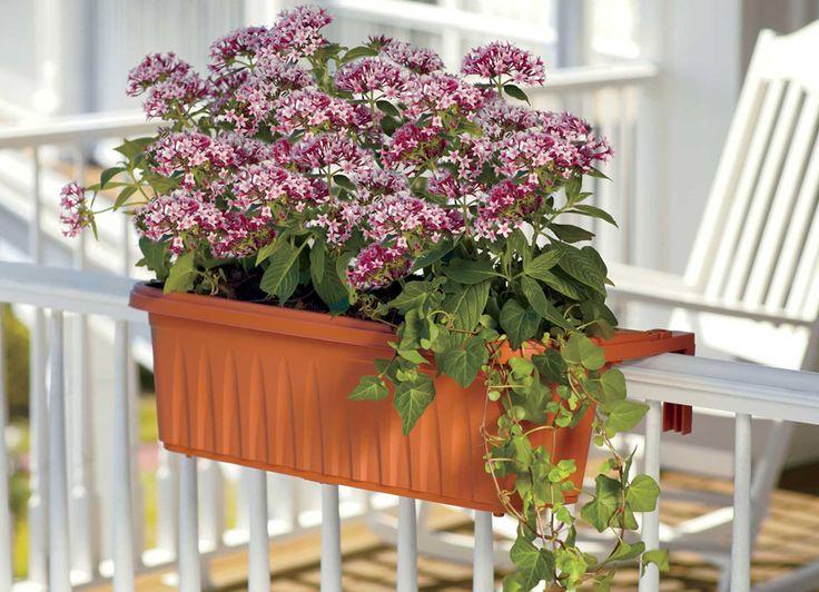 Unique Balcony Planters Ideas On Pinterest Balcony Railing - Balcony planter ideas