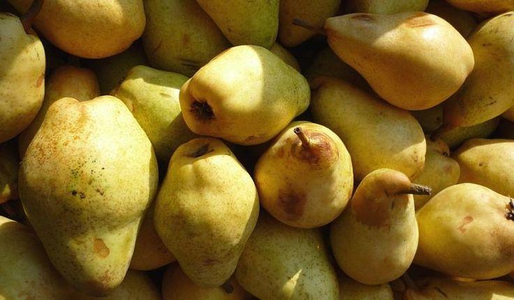 pears-74218_960_720