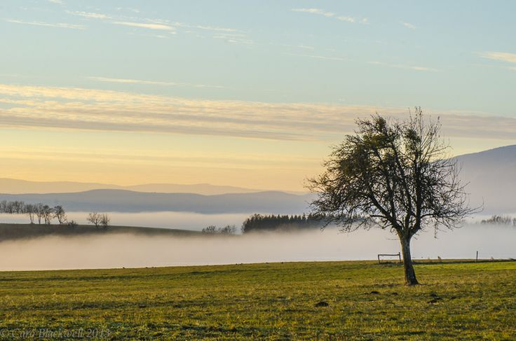 daily dog walk in Cernex - at sunset on a foggy and frosty afternoon photographer - Caro Blackwell