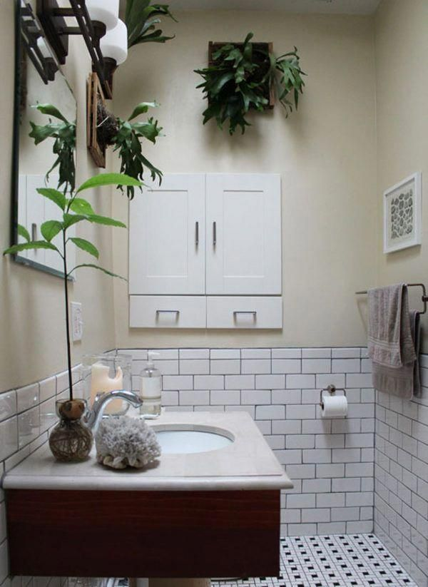 Best Plants For Bathroom With No Window Bathroomplants Windowless Bathroom Tidy Bathroom Bathroom Plants Small bathroom no window design