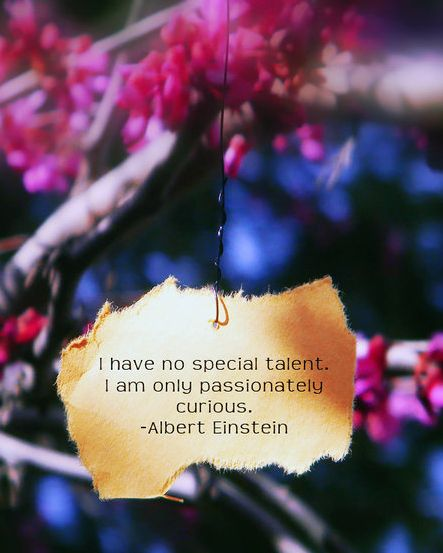 "Something to ponder... ""I have no special talent.  I am only passionately curiouis."" - Albert Einstein"