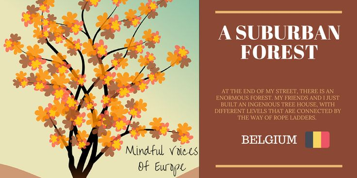 Mindful Voices of Europe: A Suburban Forest (Belgium) The belgian short story of our book. Learn more on www.mivoceu.eu