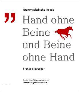 Trust-your-Horse WISSENSSTEINCHEN: Eine Regel von François Baucher, die besagt, dass Hand und Bein niemals gleichzeitig eingesetzt werden dürfen!