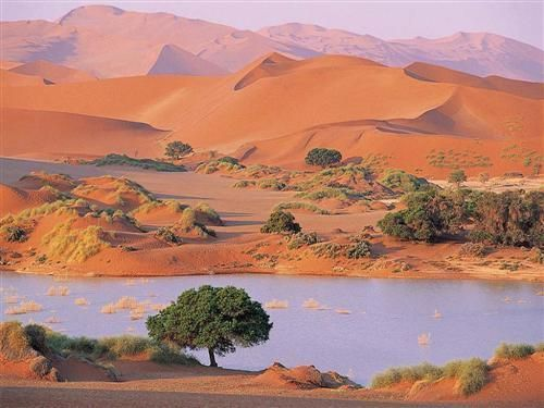 Algérie oasis-desert du sahara