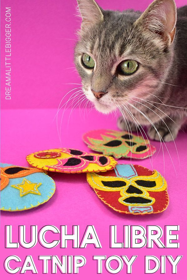 Diy Lucha Libre Cat Toys With Images Cat Toys Handmade Cat