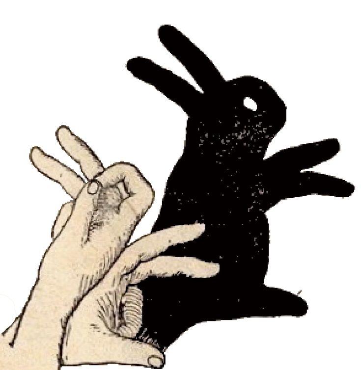 активное картинка зайца из ладони спортивной