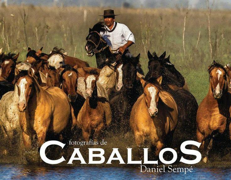 "Libro ""Caballos"" - Daniel Sempé ~ Folkloretube"