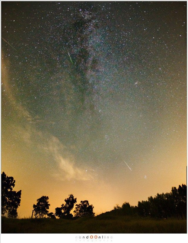 Vallende sterren kijken in Nederland | Zomerse meteorenregen - Paradijsvogels Magazine