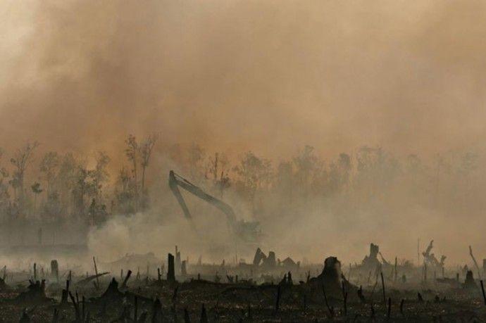 気候変動問題のカギを握る「悪名高き」巨大企業は生まれ変わるのか
