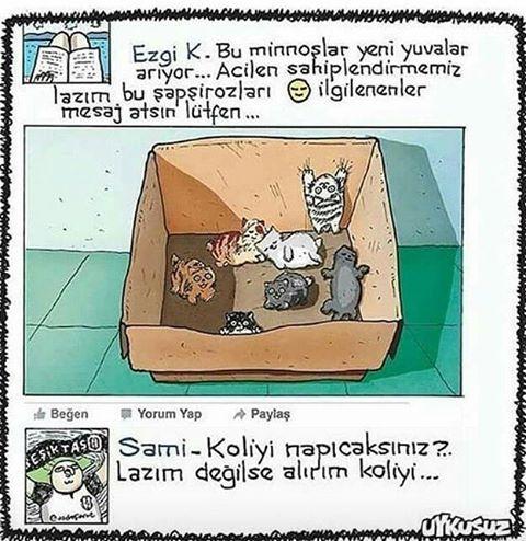 Günaydın :)) #sempatili #satınalmasahiplen #kedi #kedicik #karikatür #günaydın #karikatur #mizah #koli #sami #instagram #instacat #komik #pazarkeyfi #kahvekeyfi #facebook http://turkrazzi.com/ipost/1524522769601395775/?code=BUoMWG2Ffw_