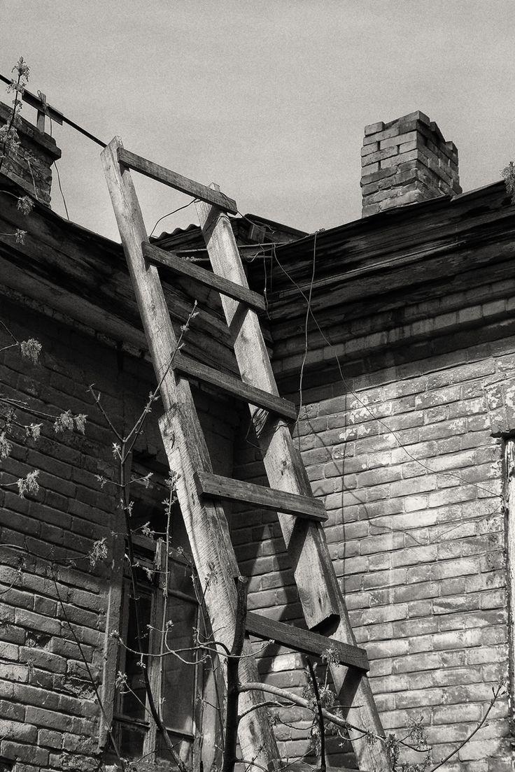 старая лестница, старая крыша. 2005