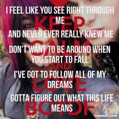 Lyricart For Dont Want To Be Like You By Blood On The Dance