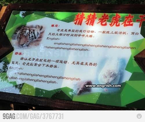 English english english...