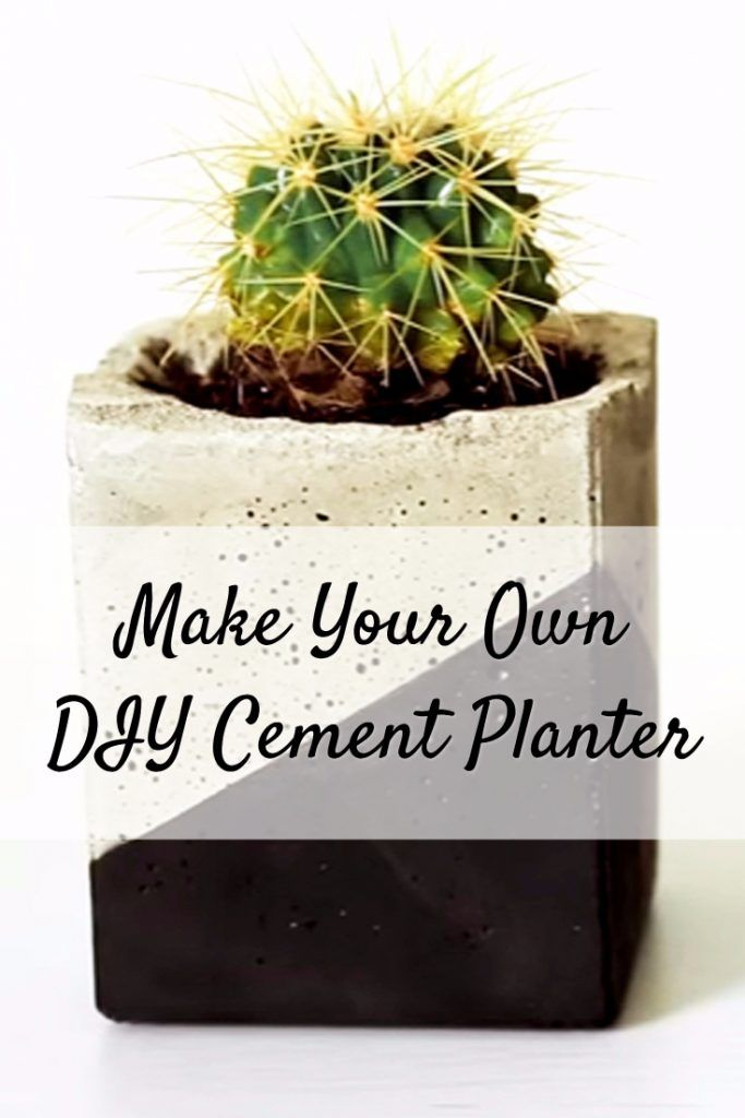 Make Your Own DIY Cement Planter
