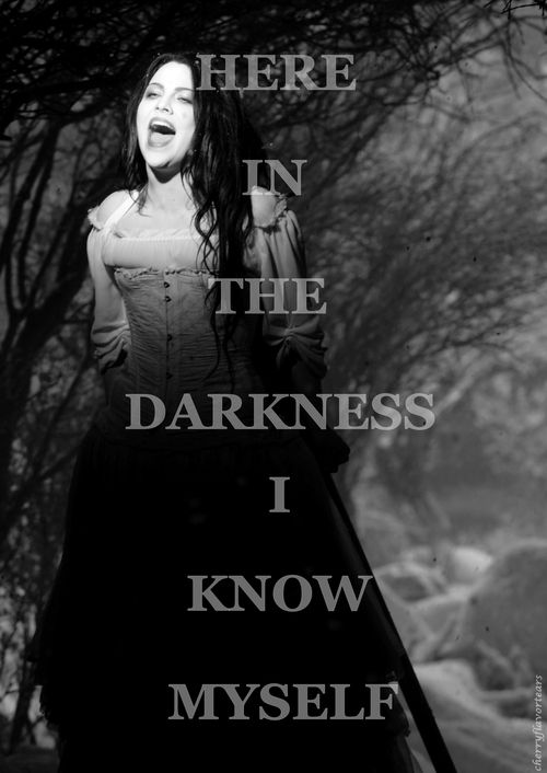 Here in the darkness I know myself - Evanescence