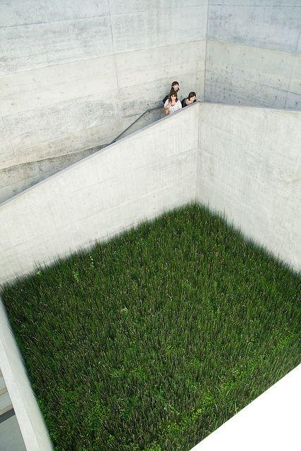 Ando's Chichu green courtyard, Naoshima Island, Kagawa, Japan,By ippei & janine naoi