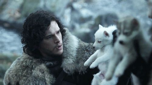 """And one of Jon Snow looking at a puppy, for good measure: 