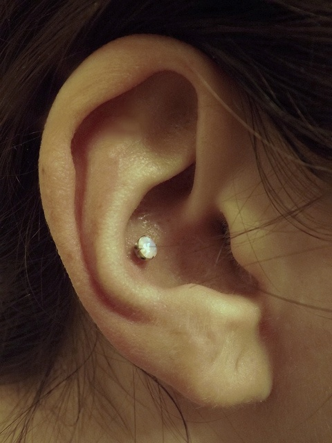 Conch piercing with opal stud. Definitely thinking about getting this for sure