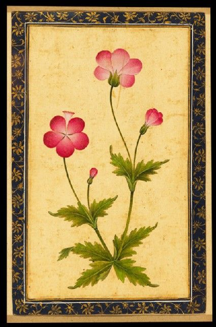 Style: Mughal; Type: Elephants, birds, and flowers; Title: 'Pink composite flower with leaves', north India, c. 1630