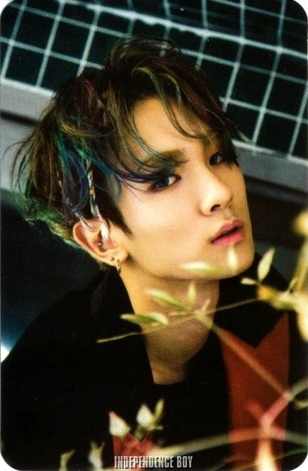 Key (Kim Kibum) (SHINee).