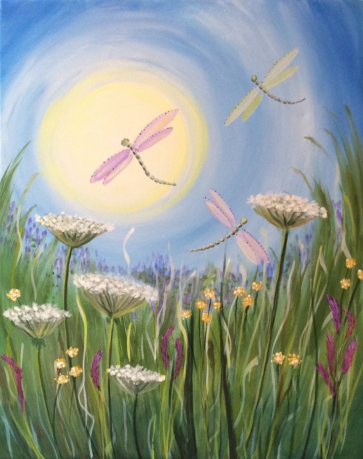 Dragonfly Meadow Add Lights For Lightening Bugs Amp Stars
