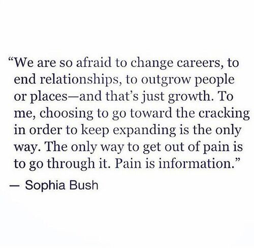 """We are so afraid to change careers, to end relationships, to outgrow people or places—and that's just growth. To me, choosing to go toward the cracking in order to keep expanding is the only way. The only way to get out of pain is to go through it. Pain is information."" —Sophia Bush"
