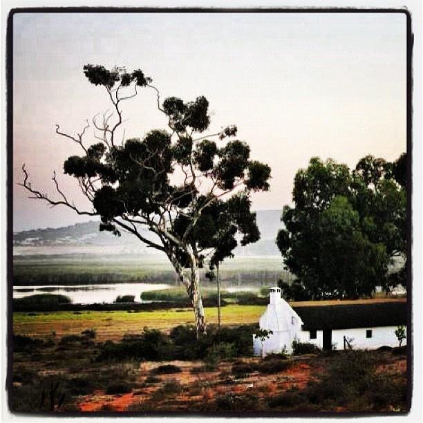 Dawn in Vleikraal in Elands Bay, Western Cape, South Africa