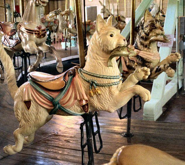 The 1905 G.A. Dentzel Carousel at Ontario Beach Park in Rochester, NY. Model: Menagerie. Dentzel Jumping Cats...