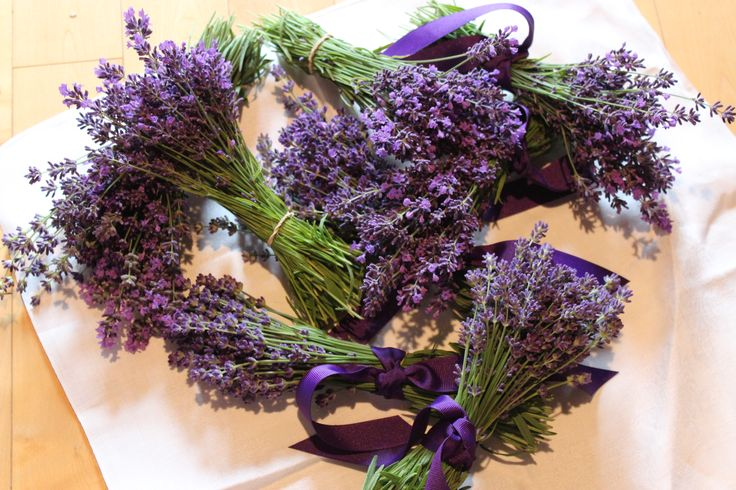 Our mini Lavender Bunches at Lovegrass Farm, P.E.I.  $3.00 each