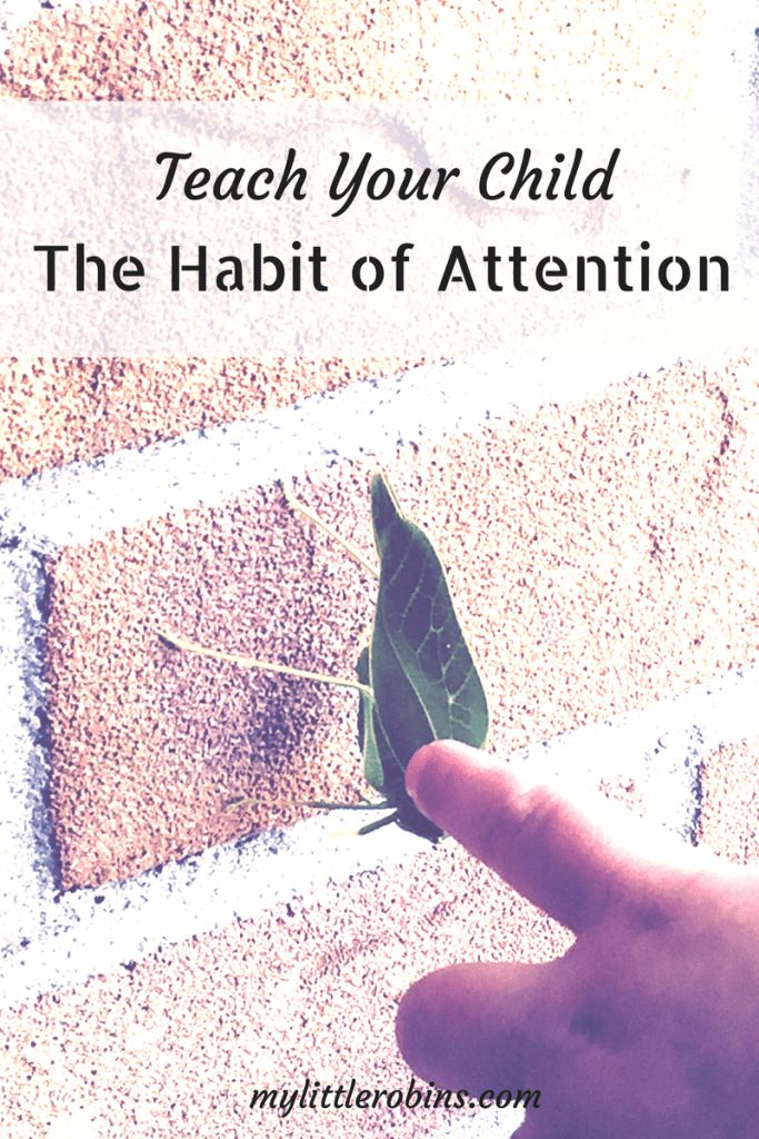 The habit attention is one that we should help our children form during the early years. #habitofattention #charlottemason